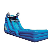 gaint dolphin inflatable slide