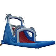 used inflatable slides dolphin